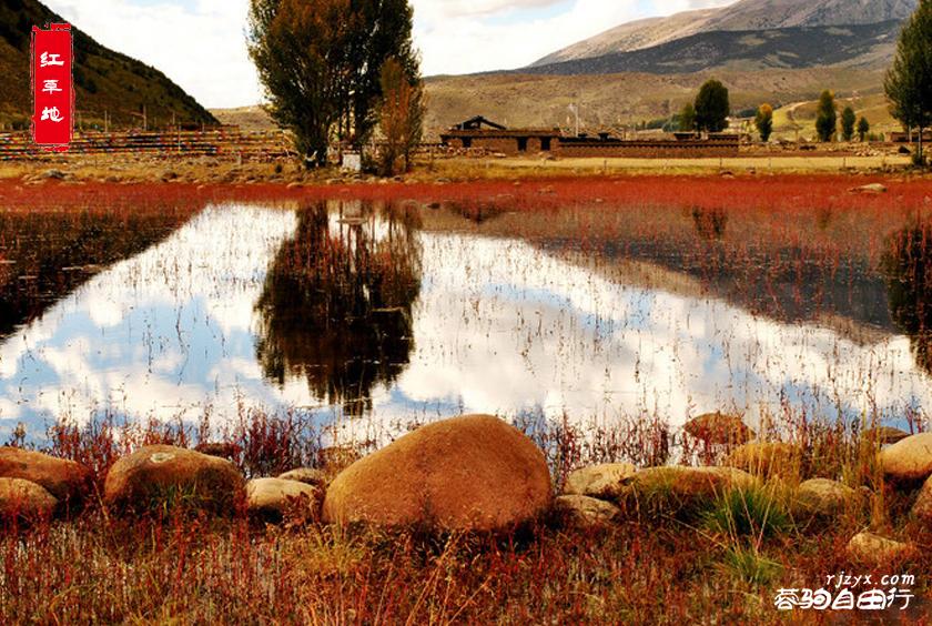 红草地带水印